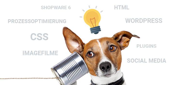 Web Labels interne Fortbildung
